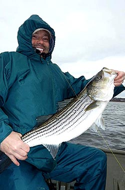 Striper fishing at Country Haven Miramichi Lodge & Cottages